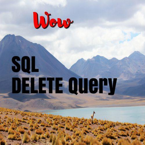Delete query