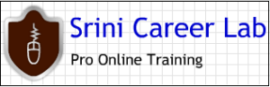 Srini Career Lab