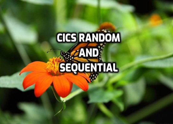 CICS Random and Sequential