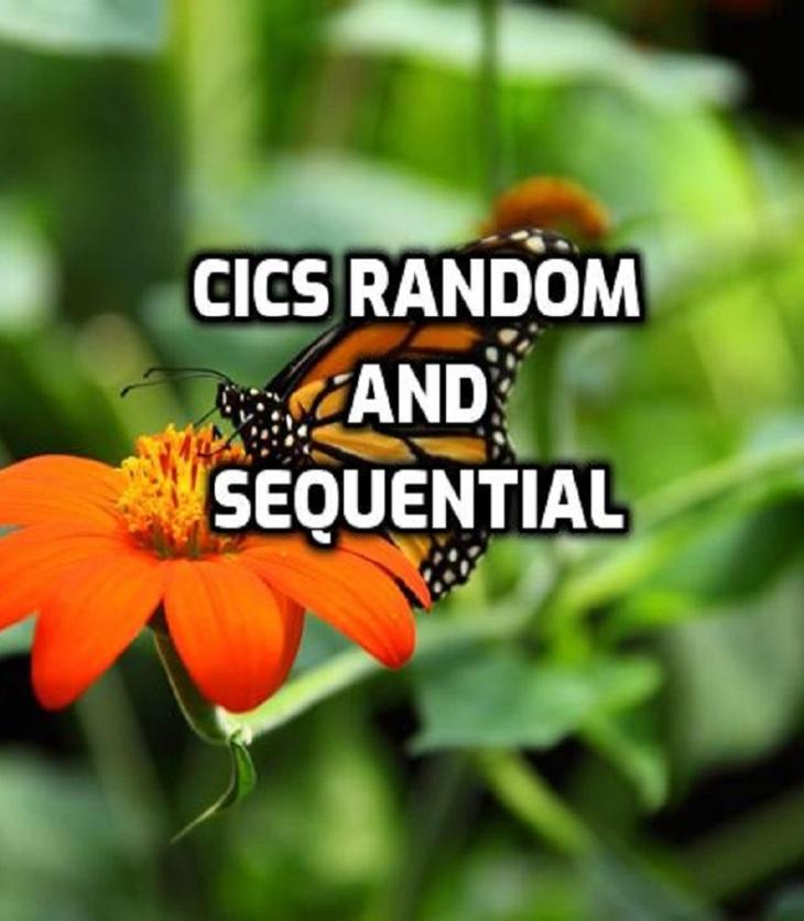CICS Random and Sequential
