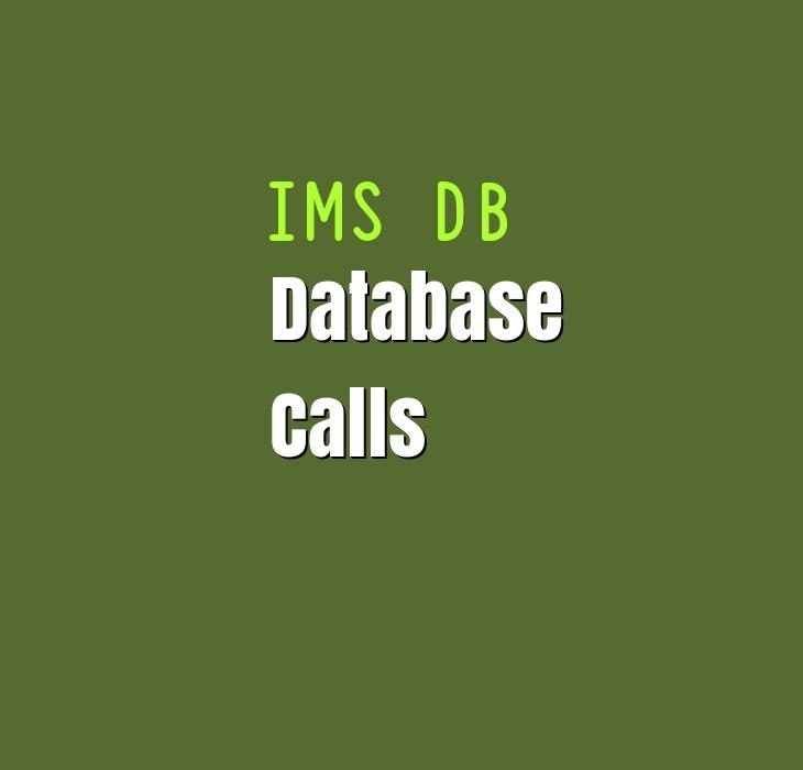 IMS DB DLI Calls