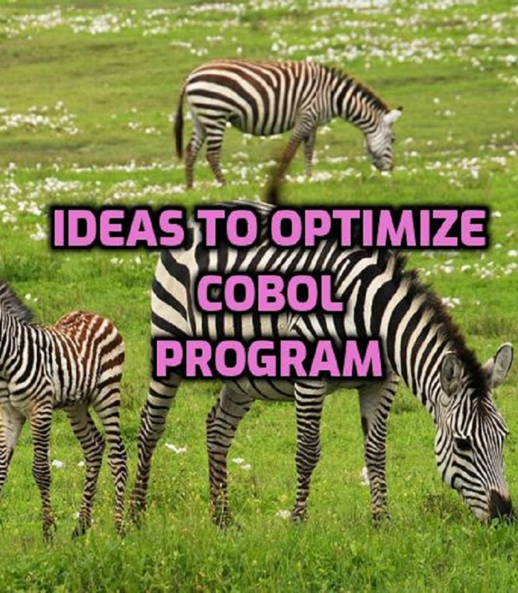 How to optmize COBOL module