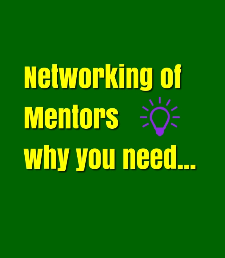 Networking of mentors why you need in your current company