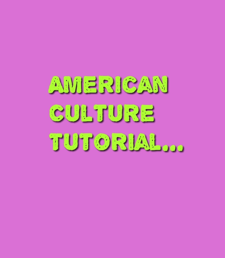 american culture tutorial for indian software engineers
