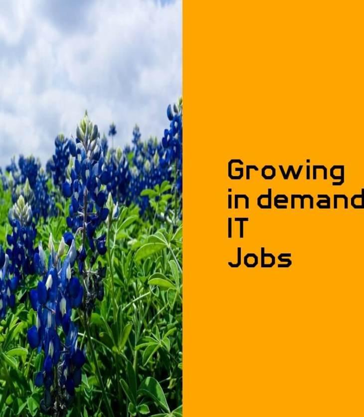 growing in demand jobs