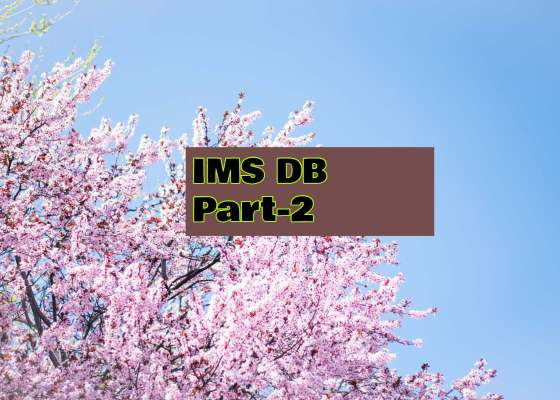 ims db part 2 questions