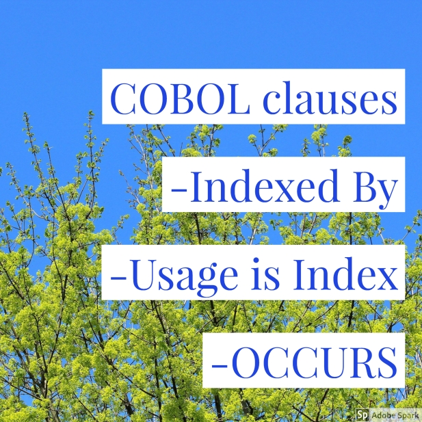 COBOL clauses