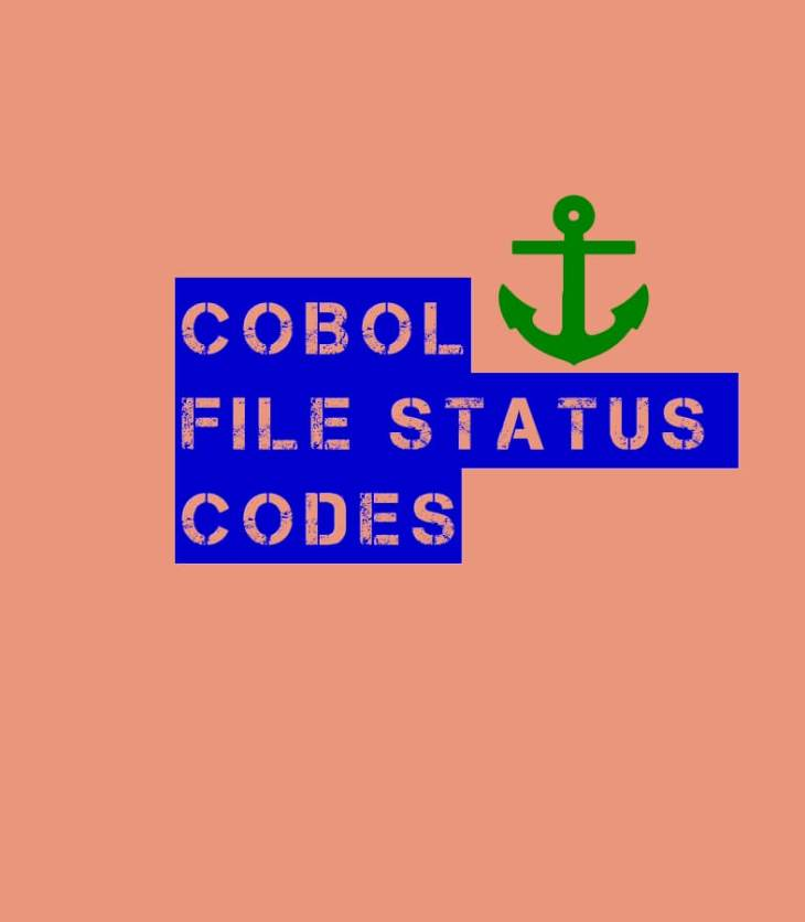 Explained COBOL file status codes and their meanings
