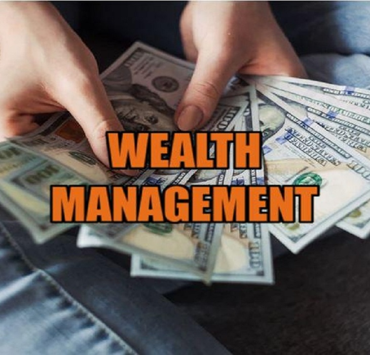 Wealth Management Vs Asset Management