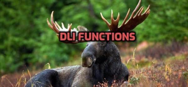 DLI functions