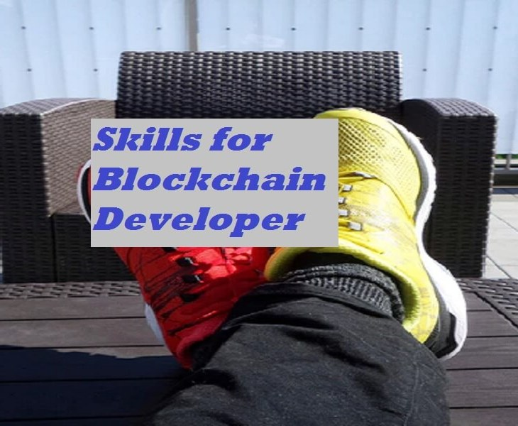 blockchain developer skills