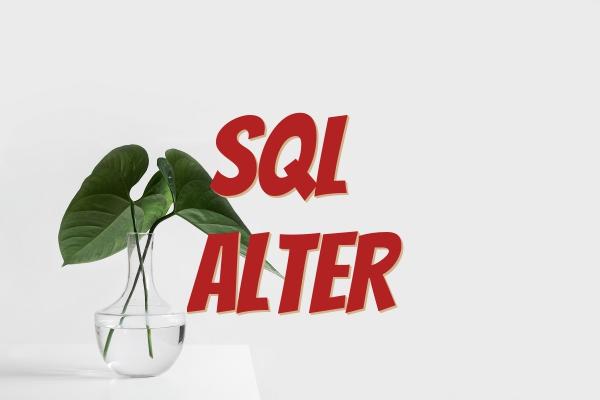 sql alter add columns