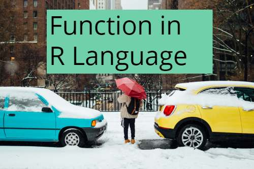 R Function Sample