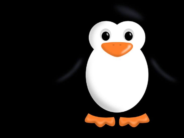 Linux for all developers