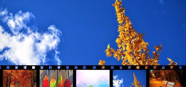 Professional video maker FlexClip Tool