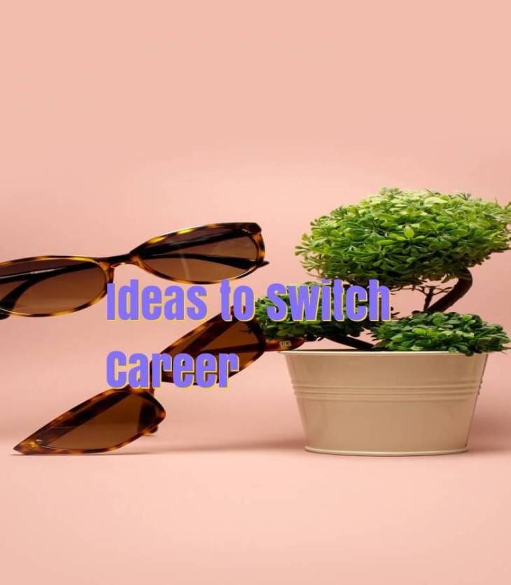 Switch IT career