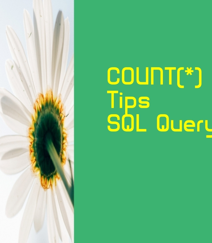 Count in SQL statement
