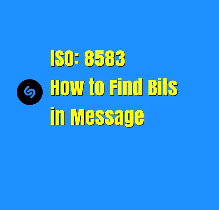 ISO 8583 how to find Bits